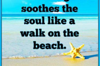 a-walk-on-the-beach