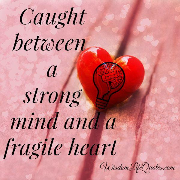 Caught between a strong mind and a fragile heart