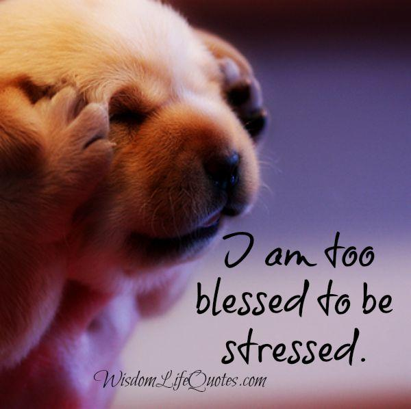 I am too blessed to be stressed