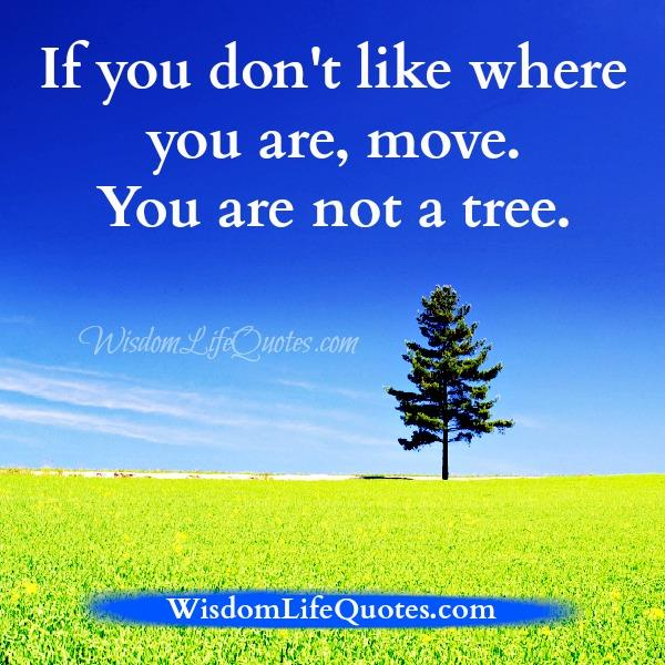 If you don't like where you are, MOVE