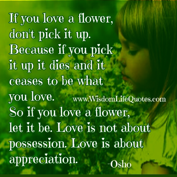 Love is not about possession