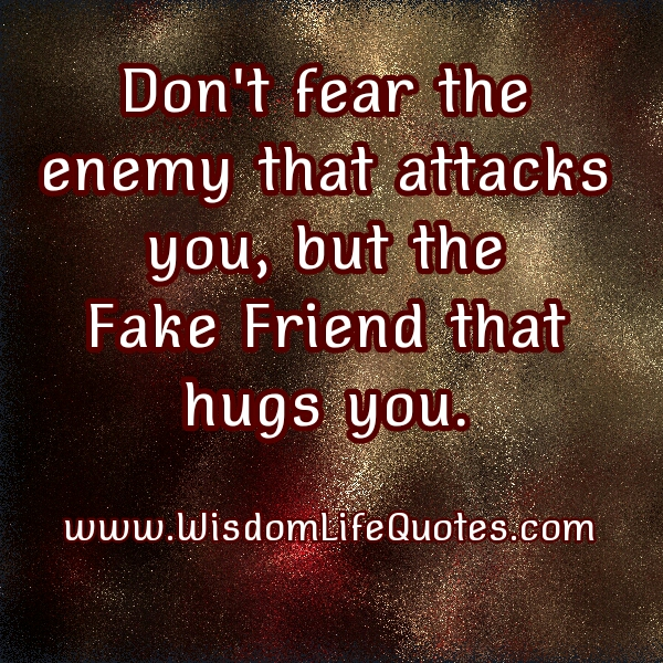 The Fake Friend that hugs you